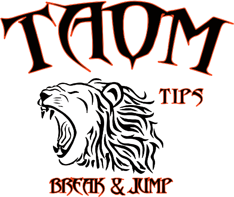 taomtips-official-logo-2015-10 png